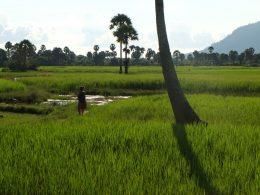 Bokor Town near Kampot, Cambodia